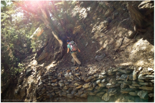 Stone_Trail