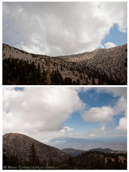 Viv_Creek_overlook_Peak